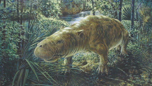 Expedition For Sale >> Miscellaneous Images | Prehistoric Florida