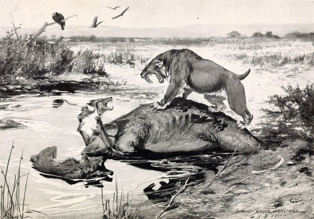 smilodon_and_canis_dirus-saber-tooth_and_dire_wolf
