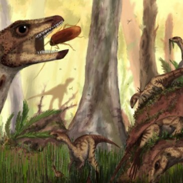 Fox-sized relative of Triceratops discovered in Venezuela