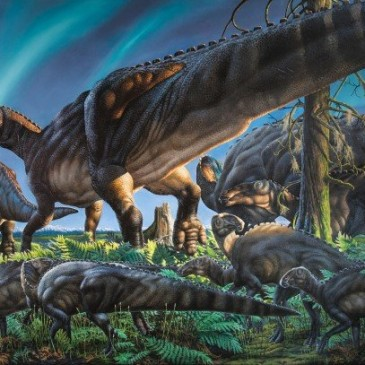 'Lost world' of cold weather dinosaurs discovered
